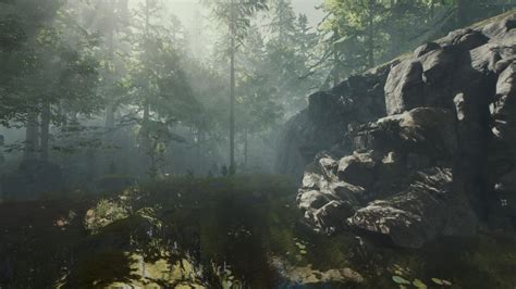 wallpaper engine  forest waterfall loop  sound