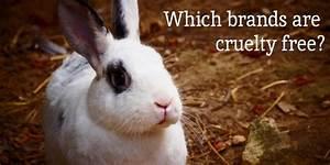 Cruelty Free Drugstore Makeup  Beauty  My Beauty Bunny