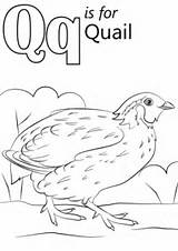 Letter Coloring Pages Quail Alphabet Quilt Printable Preschool Worksheets Kindergarten Crafts Sheets Letters Words Queen Abc Supercoloring Super Drawing Animal sketch template