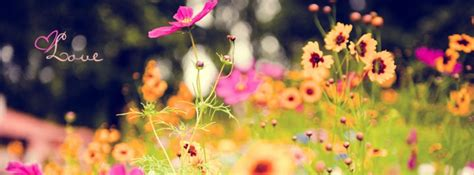 Spring Facebook Covers  Cool Images