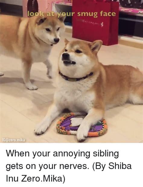 Shiba Inu Meme - 25 best memes about shiba inu shiba inu memes