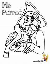 Pirate Coloring Pirates Parrot Printout Boys Costume Yescoloring Scurvy sketch template