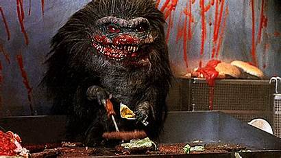 Critters Horror 80s Gifs Gold Film Giphy