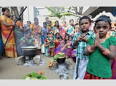 What is Pongal? Learn some amazing facts about this