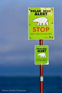 Canada Polar Bear Warning Signs