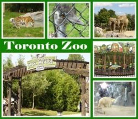 zoo toronto canada