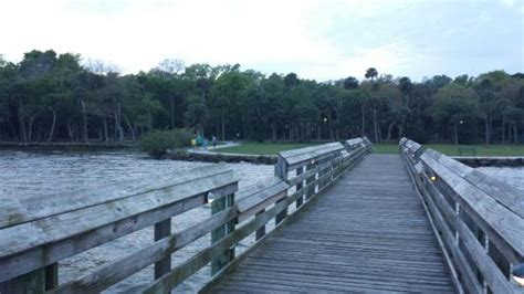 Manatee Hammock Cground Titusville Florida by View Of The Pavilion From Our Csite Picture Of