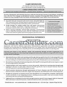 Sample resume chief operating officer order custom essay for Coo resume template word