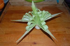 Decoration Legumes Facile : fleur nacr e d coration pour buffet base de poireaux cot cuisine ~ Melissatoandfro.com Idées de Décoration