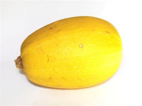legumes de la famille des potirons les courges courgette citrouille p 226 tisson potiron etc article