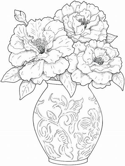 Scenery Drawing Coloring Pages Getdrawings