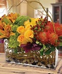 """""""Branching Out"""" 