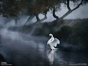 """30 Of The Most """"National Geographic"""" Photography Wonderful ..."""