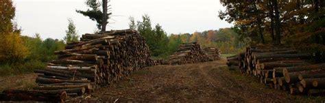 grezenski forest products hardwood lumber producer