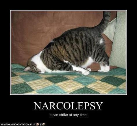 Narcolepsy Meme - narcolepsy trying to wake up pinterest