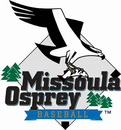 Osprey Missoula Falls Players League Voyagers Pioneer