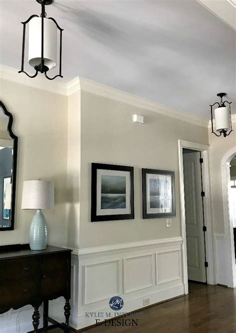 sherwin williams    neutral beige paint colours