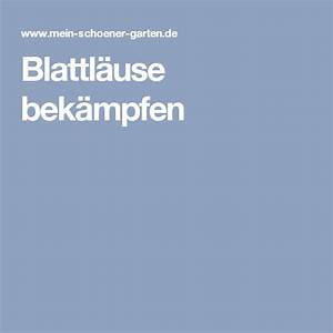 Blattläuse Gurken Bekämpfen : ber ideen zu blattl use auf pinterest mittel ~ Lizthompson.info Haus und Dekorationen