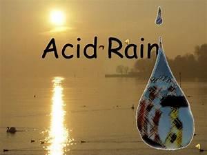 Acid Rain Up
