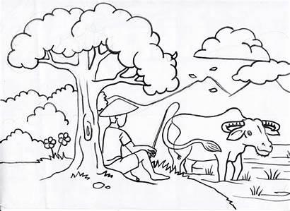 Gambar Anak Mewarnai Sketsa Sd Untuk Kelas