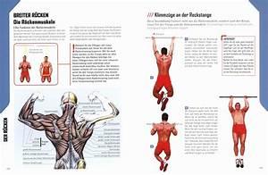 Das Muskel-guide-programm