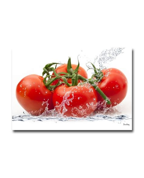tableau deco cuisine tableau plexiglass cuisine tomates