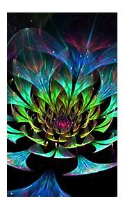 Glittering Colorful Flower Fractal HD Abstract Wallpapers ...