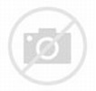 HARD TICK: GENUS DERMACENTOR | Lyme Association of Greater ...