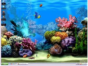 Living Marine Aquarium Animated Wallpaper, Free Wallpaper