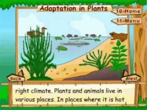 learn science class  plant life adaptation