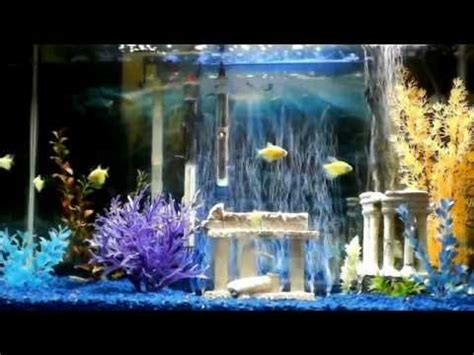 gallon aquarium wblue led bubble wand youtube