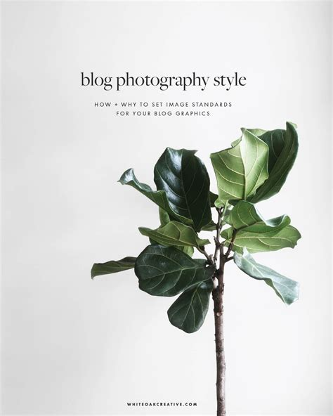 Trad Home Photographers Dreamy New Book by Why Establishing A Photography Style Is More