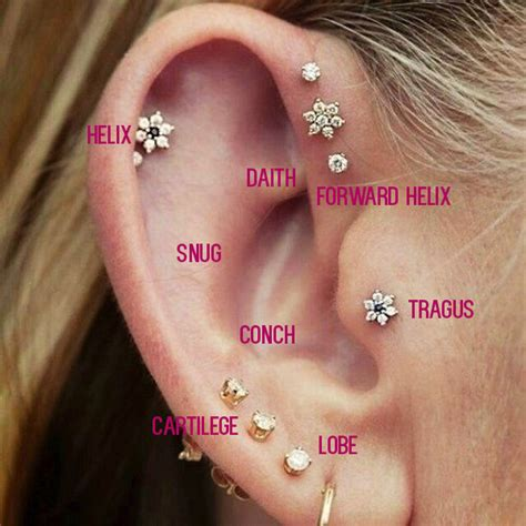 16 pictures that will make you want all the ear piercings