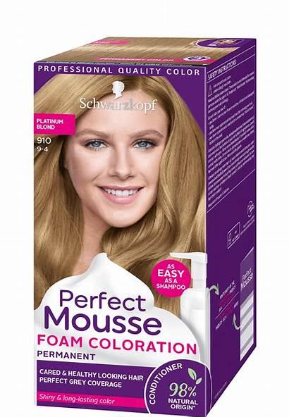 Mousse Perfect Schwarzkopf Icy Foam Blond