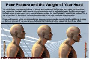 Bellevue Chiropractor Active Spines Chiropractic Blog
