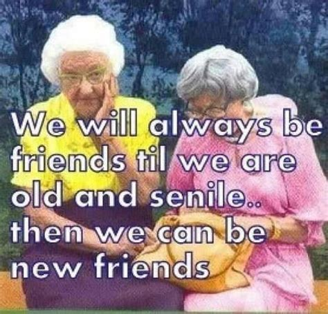 funny  friend quotes sayings funny  friend