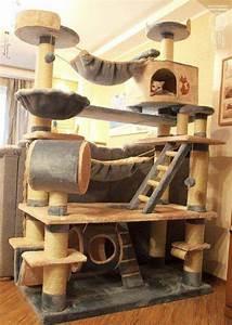Arbre A Chat Solide : arbre chat g ant tout sur le chat ~ Mglfilm.com Idées de Décoration
