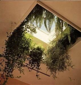 Grünpflanzen Im Schlafzimmer : die besten 25 schlafzimmer pflanzen ideen auf pinterest pflanzen im schlafzimmer einfache ~ Watch28wear.com Haus und Dekorationen