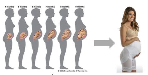 photo ventre femme enceinte 4 mois