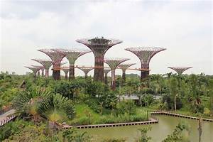Gardens by the Bay: Singapore's Most Popular Running Spot ...
