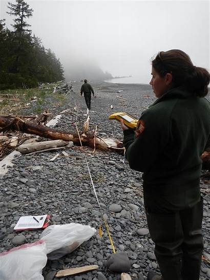 Debris Marine Monitoring Noaa Beach Program Data