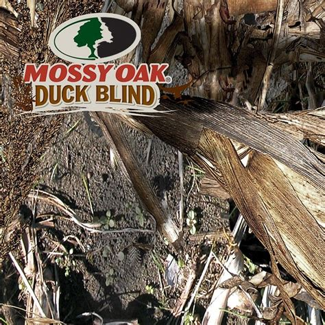 mossy oak duck blind 29 best camo patterns images on camo patterns