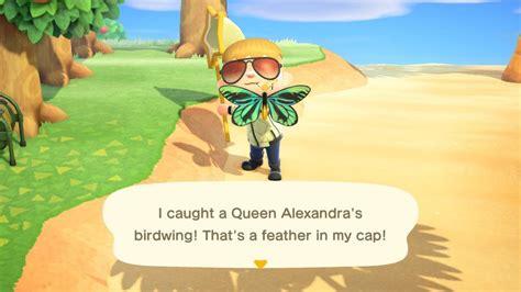animal crossing  horizons queen alexandras birdwing