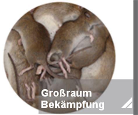 rattenbekaempfung notdienst toxtron  essen oberhausen