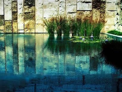 Zen Desktop Backgrounds Water Plants Wallpaperget Nature