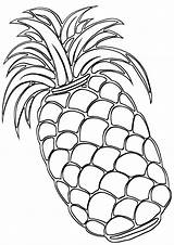 Pineapple Coloring Pages sketch template