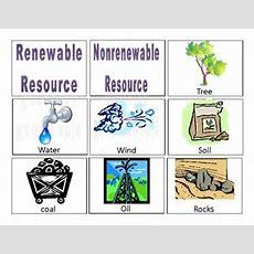 Renewable Resources Five Examples Of Renewable Resources