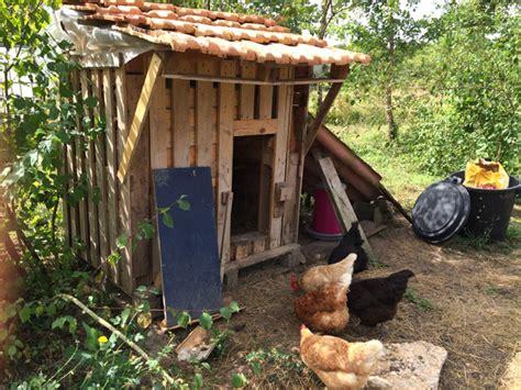 fabriquer le en bois comment fabriquer un poulailler en bois pour le jardin