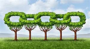 Builders and how to green your supply chain
