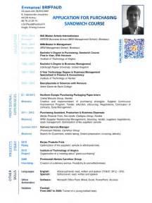 resume templates on microsoft word 2010 cv emmanuel briffaud anglais pdf par briffaud fichier pdf
